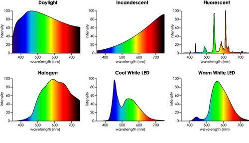 Світлодіодні і енергозберігаючі лампи: синій спектр і шкоду здоров'ю