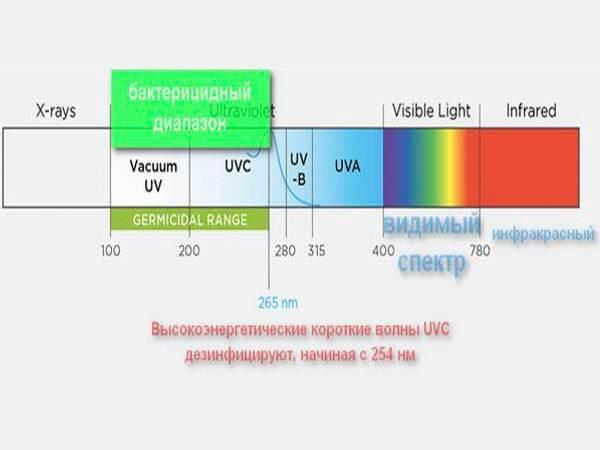 Бактерицидная лампа: УФ-лучи